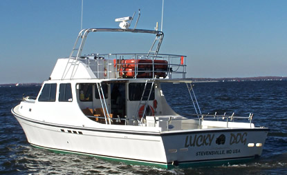 Maryland charter boat fishing on the chesapeake bay lead for Chesapeake charter fishing